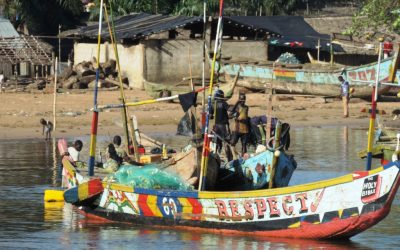 November 21 is World Fisheries Day