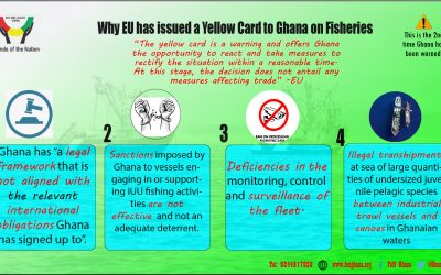 Infographic: Why EU issued a yellow card to Ghana on fisheries
